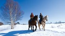 Horseback Riding Lesson in Alta Badia, Trentino-Alto Adige, Horseback Riding