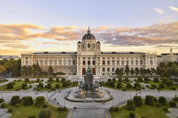 Kunsthistorisches Museum Vienna Entrance Ticket