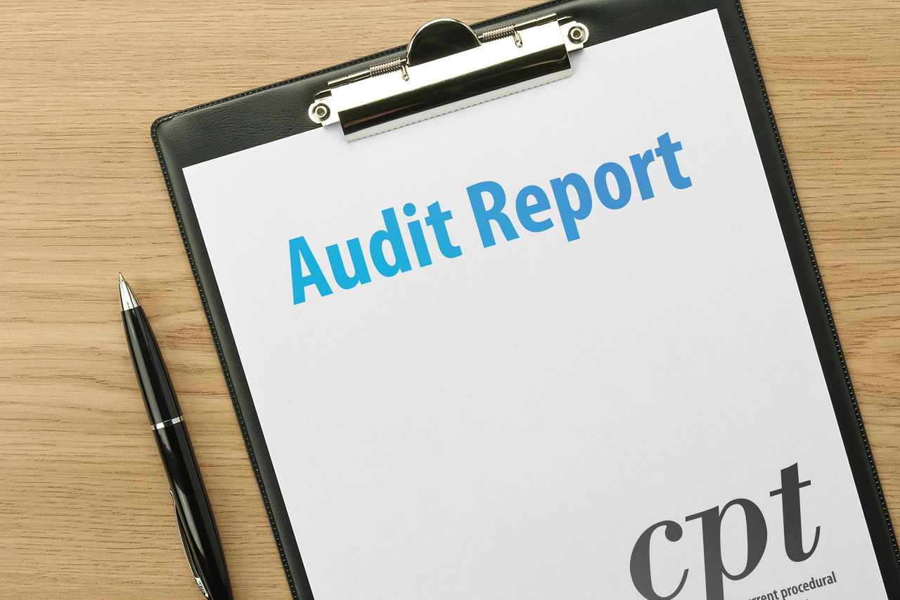 E M Benchmarking Can Lower Your Audit Risk
