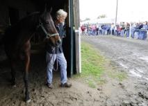 Dont miss the Suffolk Downs Showcase this Sunday, October 25th. This photo was taken at the 2008 event. Photo John Bohn, Boston Globe
