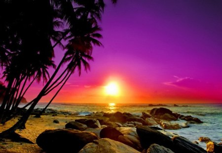 Tropical Sunset Sunsets Amp Nature Background Wallpapers