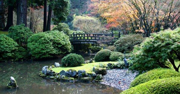 comment creer un jardin japonais