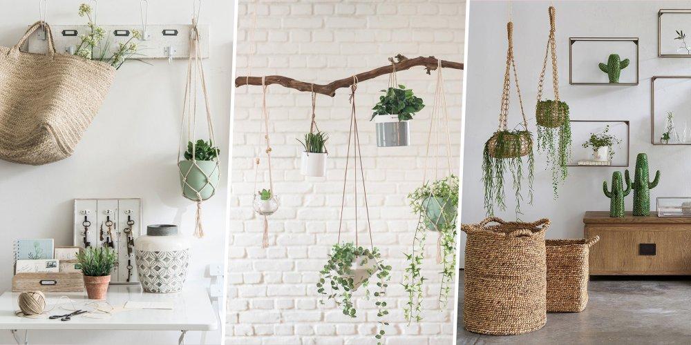 plantes suspendues pots a suspendre