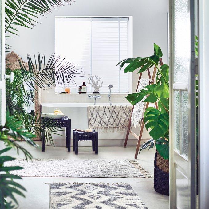plantes vertes salle de bains