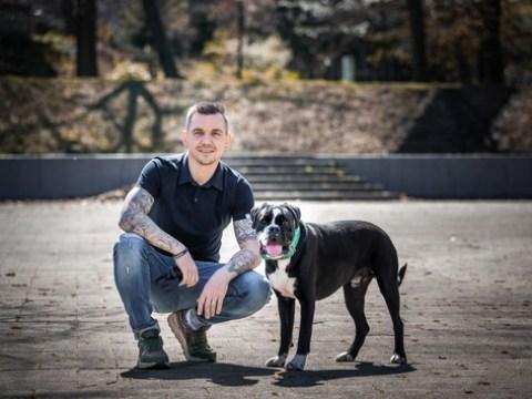 5 Dos and 5 Don'ts für den richtigen Umgang mit Hunden im Sommer