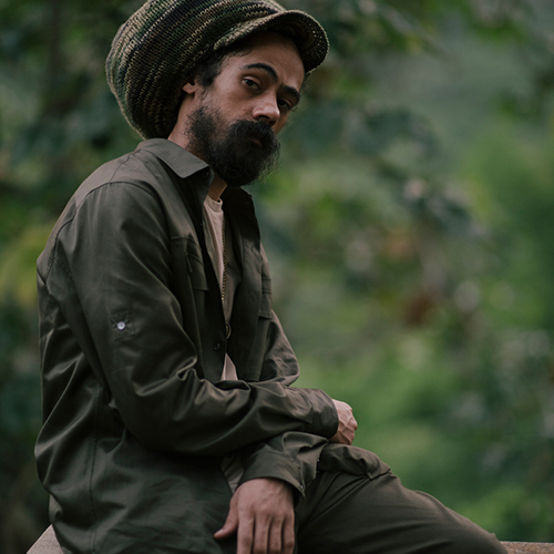 Image result for stony hill damian marley