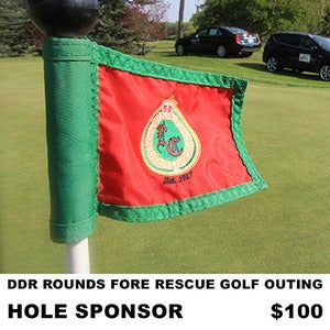 Image of DDR Golf Outing 2013 (Hole Sponsorship)