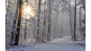 Сняг в южна Бразилия – 24chasa.bg