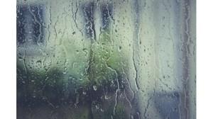 По-голямата част от дъжда падна в Търговище и Монтана, утре отново ще превали.