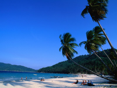 https://i1.wp.com/cache2.allpostersimages.com/p/LRG/27/2723/QBIND00Z/posters/blomqvist-anders-palm-trees-on-long-beach-pulau-perhentian-kecil-malaysia.jpg