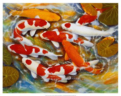 La leyenda de los peces Koi: Símbolo Japonés de Perseverancia ...