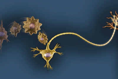 neuron with dendrites and neurotransmitters in gold tones on a blue background, drawn to resemble a necklace