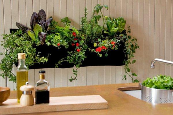indoor gardens apartment design How to Grow an Indoor Garden - Cache Valley Family Magazine