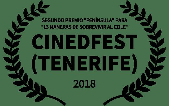 2º Premio en el Festival de Sta. Cruz de Tenerife (CINEDFEST)