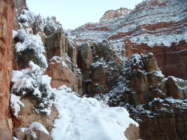 North Kaibab in Snow
