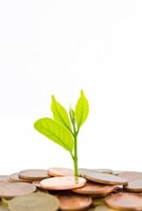 Bancos ajudam na educação finaceira
