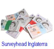 SurveyHead UK: Primeiras Impressões.