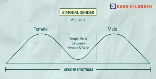 Gender Spectrum E
