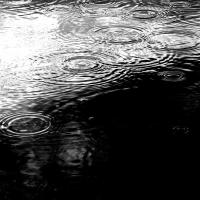 Oba! Uma Noite com Chuva!