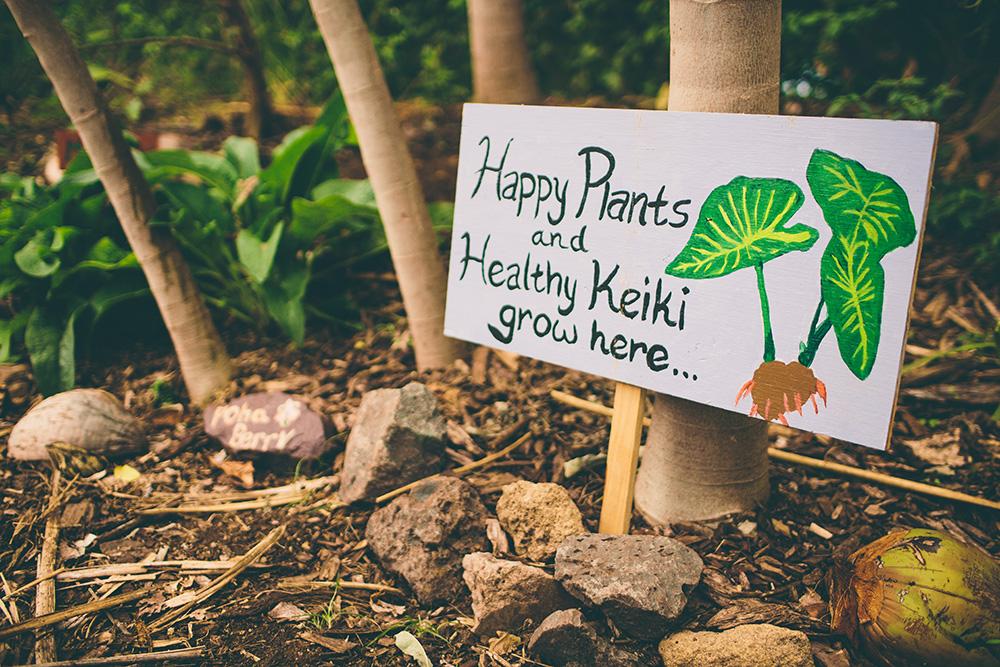 grow-the-change-maui-5976