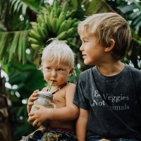 ellen fisher – maui backyard picnic – vegan family