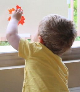 Falling leaves child reaching thru pane