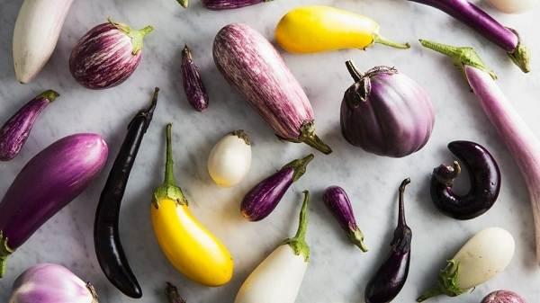 Выращивание-баклажанов-Как-и-когда-сажать-баклажаны