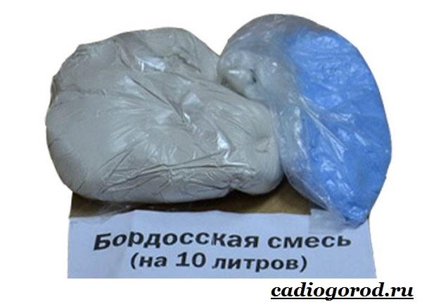 Бордосская-смесь-Состав-приготовление-и-применение-бордосской-смеси-14