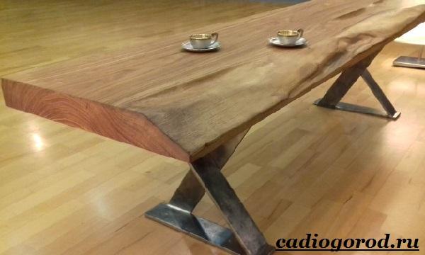Карагач-дерево-Описание-особенности-применение-и-цена-карагача-1