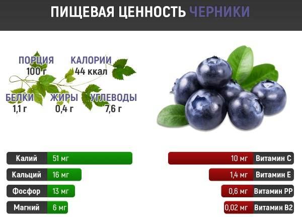 Черника-ягода-Описание-и-особенности-свойства-виды-и-сорта-уход-и-выращивание-черники-8