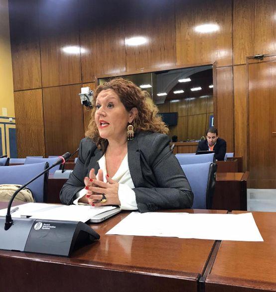 Araceli Maese pregunta por el Museo del Flamenco de Jerez