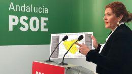 Araceli Maese presenta la campaña 'La Junta No Funciona'
