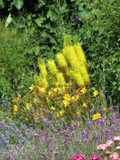A Walk Through the Flower Gardens at Chartwell, Kent, UK