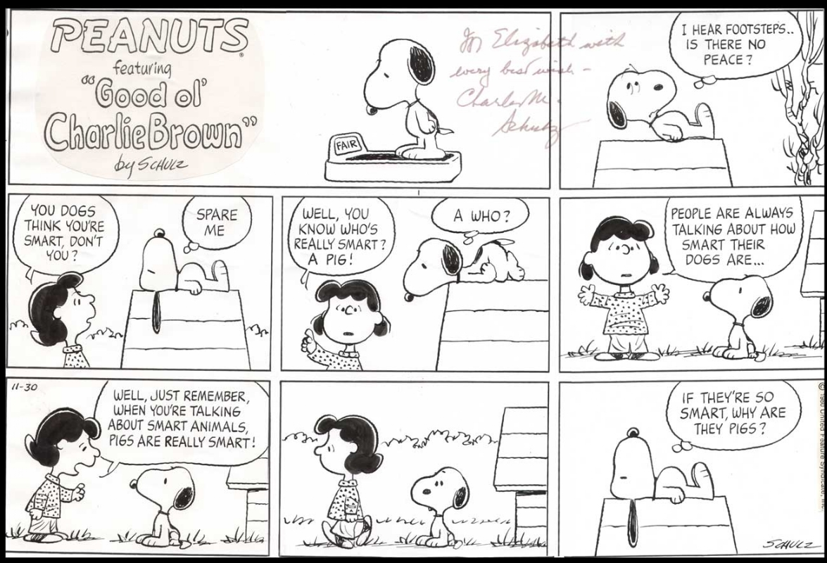 Peanuts Sunday Page In Comicconnect Comic