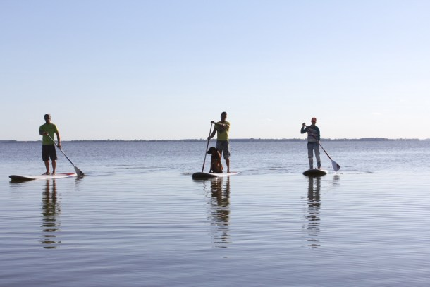 stand-up-paddling-usedom-1-2