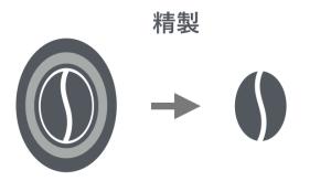 図:コーヒー豆の精製