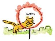 火の輪くぐり猫