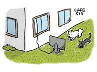外でテレビを見る犬と猫