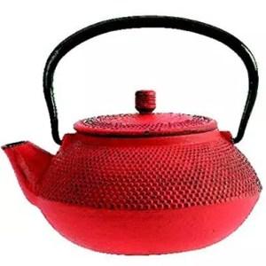 TheKitchenette Shogun Cast-Iron Teapot 0.6L