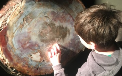 A Day at the Museum: Explaining Naked Neanderthals