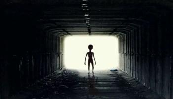 alienação