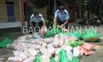 Bắt giữ 455 kg vịt Trung Quốc nhập lậu