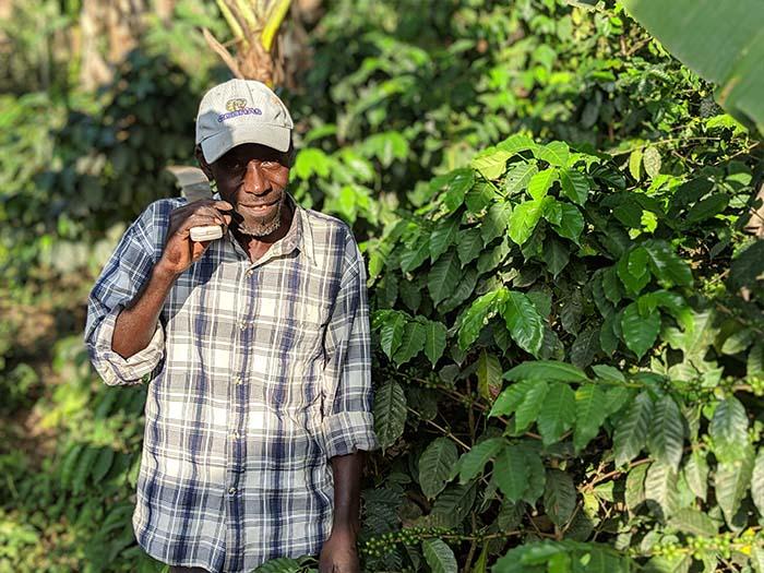 cafe kreyol organic coffee farmers COOPACVOD haiti 02