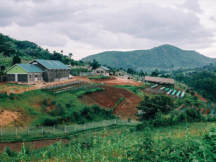cafe kreyol organic coffee farmers bukusu wash station uganda 02