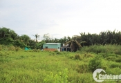 QCG đã nhận 2.882 tỷ đồng từ Sunny Island liên quan đến dự án Phước Kiển