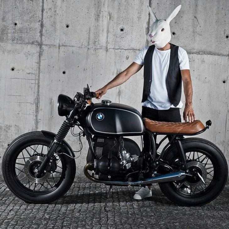 By @iambunnyadventures -  Welcome to the adventures of. The traveling bunny 🐰  project 📷@joaocarlosphoto  bunny riding his custom @banditgarageportugal