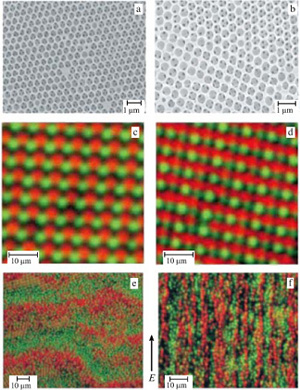 Illustrations of self-assembled colloidal structures. (a) Highly ordered regions with hexagonal symmetry extending over assembled from functionalized (patchy) colloidal silica particles. The colloidal structure exhibits a photonic band gap in the visible light range. (b) Regions showing co-existing hexagonal and square symmetry, from [13]. (c, d) Confocal microscope images illustrating highly-ordered self-assembled structures in 'ionic' colloidal crystals of oppositely charged particles assembled from positive (red, ) and negative (green, ) polymethylmethacrylate spheres. (e, f) Electric field induced structures in the same system: stationary bands perpendicular to the field directions (e) and lanes of oppositely moving particles parallel to the field direction, emerging for larger amplitudes of the applied electric field (f).