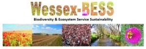 Wessex BESS