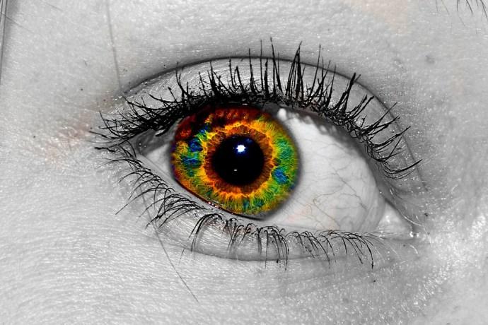 Eye-ris by Zach Dischner