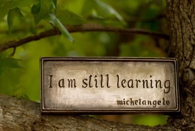 Learning by Anne Davis